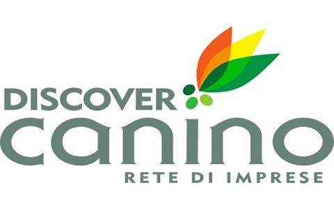 discover_canino